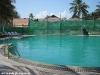 phangan_bayshore_resort074