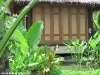 rasananda-ko-phangan1063