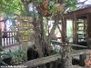 santhyia-resort067