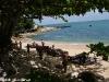 Santhyia Resort & Spa Ko Phangan Strand Foto 19