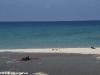 Smile Bungalow Bottle Beach 37