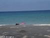 Smile Bungalow Bottle Beach 38