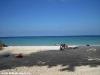smile-bungalows-bottle-beach74