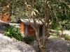 thongtapan_resort012