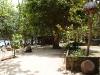 thongtapan_resort033