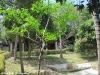 thongtapan_resort075
