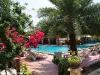 Tommy Resort Haad Rin 55