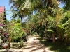 white-sand-bungalows23